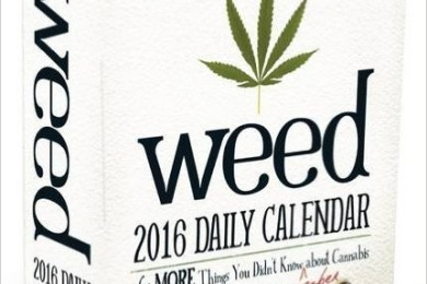 2016 daily weed calendar 365 Things You Didn't Know about Cannabis