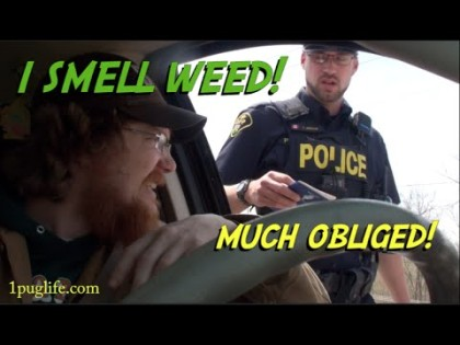 WHAT TO DO WHEN A COP SMELLS WEED