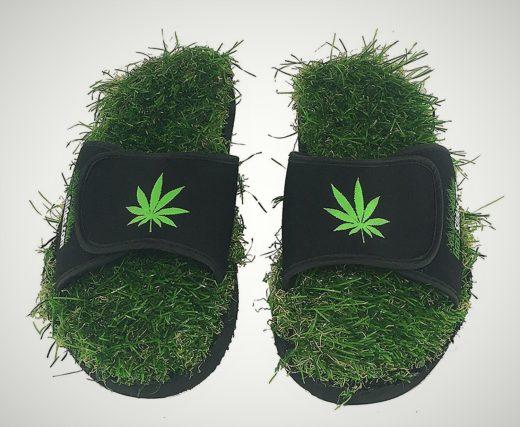 Grass Slides