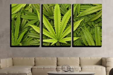 Marijuana Leaf Canvas Wall Art